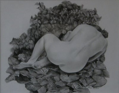 Nesting, Drawing, pencil on paper, 50 x 40cm, $850
